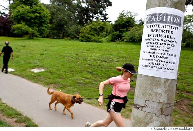 {filename  SHOWN: A young woman and her dog run past a coyote warning sign on JFK Drive in Golden Gate Park. Reports of a coyote attacking a dog in Golden Gate Park, San Francisco, CA. (Katy Raddatz/The Chronicle)  ** Mandatory credit for the photographer and the San Francisco Chronicle. No sales; mags out. Photo: Katy Raddatz