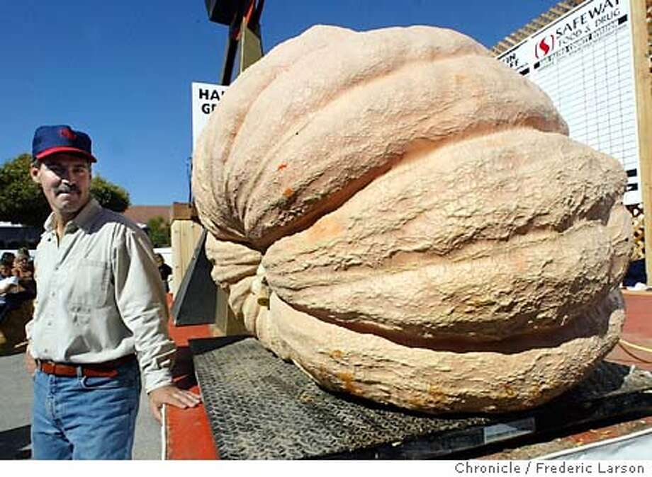 ; Steve Daletas (left) of Pleasent Hill Oregon, breaks the Half Moon Bay record for the largest/heaviest (1180 pounds) pumpkin recorded at the 30th Annual Safeway World Championship Pumpkin Weigh-Off -- the Heavyweight Championship in the Pumpkin Capital of the World -- Half Moon Bay, California. FREDERIC LARSON / The Chronicle Photo: FREDERIC LARSON