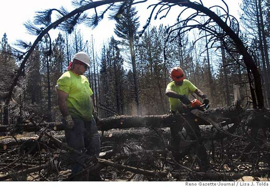 Due to the Angora Fire, Philip Ward, left, and Gumaro Cid Diaz, of Asplundh Tree Co., ready burned trees for removal from the Tahoe Basin on Thursday, July 5, 2007, near South Lake Tahoe, Calif. (AP Photo/Reno Gazette-Journal, Lisa J. Tolda) ** NEVADA APPEAL OUT, NO SALES, MAGS OUT, TV OUT ** NEVADA APPEAL OUT, SOUTH RENO WEEKLY OUT, NO SALES, MAGS OUT, TV OUT Photo: Lisa J. Tolda