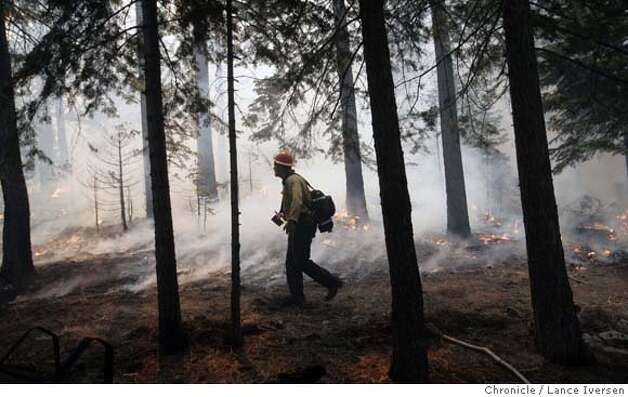 TAHOEFIRE_44465.JPG A Cal-Fire capt walks the fire line just behind a stand of home off Garnder St in South Lake Tahoe. Wind and heat from the Angora Fire are pushing flames in the direction of South Lake Tahoe Gardner St were fire crews made their stand protecting a couple dozen home that back up to forest Tuesday afternoon. South Lake Tahoe's Angora Fire continues to burn, treating 500 homes around the South Lake Tahoe high school. The inferno that consumed 173 buildings, most of which are homes in Meyers California also consumed an additional 2,500 acres of forest in both Meyers and South Lake Tahoe. 500 plus firefighters continue to try to put a ring around the blaze that is 60% contained but threatening again. (June 26) (cq) SUBJECT) Lance Iversen / The Chronicle Photo taken on 6/26/07,in SOUTH LAKE TAHOE, CA. MANDATORY CREDIT PHOTOG AND SAN FRANCISCO CHRONICLE/NO SALES MAGS OUT Photo: By Lance Iversen
