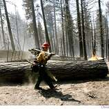 TAHOEFIRE_44814.JPG  US Forest Service firefighter Matt Lovemark from Smith River Ca station walks past a 36 inch tree he fell earlier that was a hazard within the forest North of Gardner Mountain neighborhood. South Lake Tahoe's Angora Fire continues to burn, but at a slower pace than yesterday inferno that threatened 500 homes in the Garden Mountain area of South Lake Tahoe. To date the fire has consumed 175 to 200 homes in Meyers and South Lake Tahoe. An additional 3,000 acres of forest have been lost or damaged. The wind-driven blaze is laying down for the moment as winds have dissipated since dust Tuesday, 1,888 plus firefighters continue to try to put a ring around the blaze that is 44% contained. (June 27) (cq) SUBJECT) Lance Iversen / The Chronicle Photo taken on 6/27/07,in SOUTH LAKE TAHOE, CA.