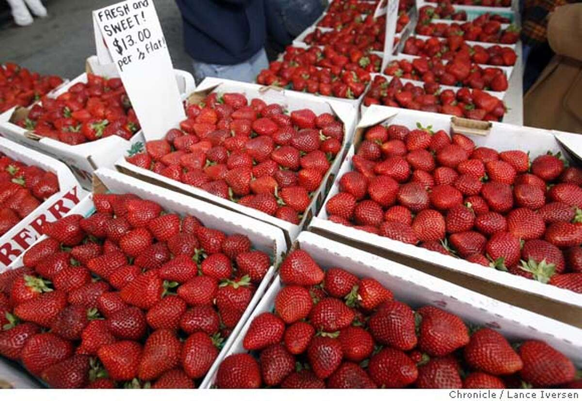 FARMMARKET20_35649.JPG Alex Nanalis has been a vendor at the Grand Lake Farmers Market for the past 15 years. His principal crop this time of year is strawberry from Santa Maria. The Grand Lake Farmers Market in Oakland is open year round 9-2pm on Saturday's. (JUNE 2) (cq) SUBJECT) Lance Iversen / The Chronicle Photo taken on 6/2/07,in OAKLAND, CA. MANDATORY CREDIT PHOTOG AND SAN FRANCISCO CHRONICLE/NO SALES MAGS OUT