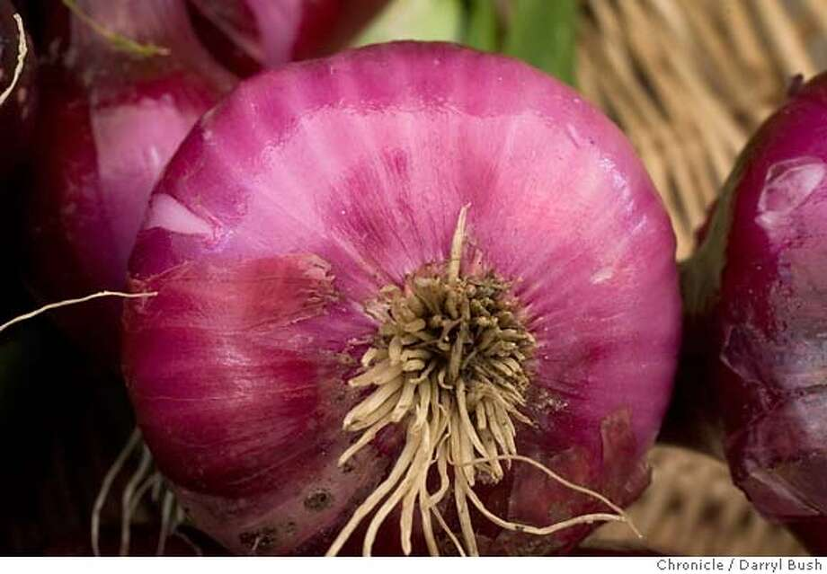 Thomson International Inc. out of California has notified the food agency that it will be recalling all varieties of onions that could have come in contact with potentially contaminated red onions. Photo: Darryl Bush