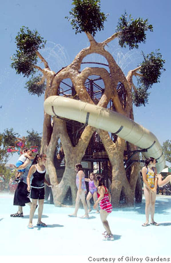 Tree Top Sprayground� is an 18-foot tall Basket Circus Tree replica, where kids can climb up inside the trunk and ride a dry slide around the tree's perimeter. Photo courtesy Gilroy Gardens Photo: Courtesy Gilroy Gardens