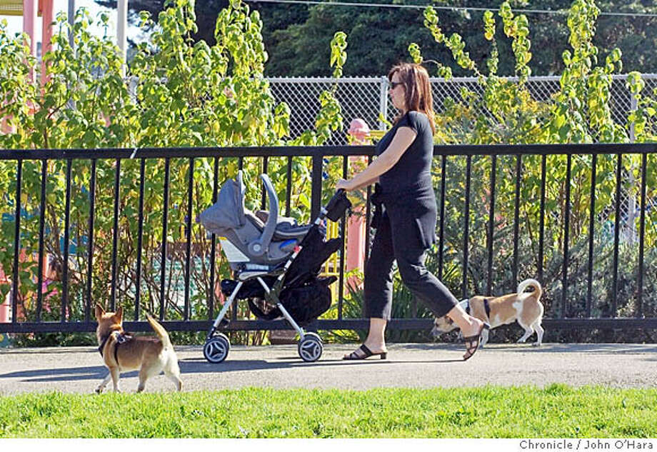 Duboce Park, Steiner st. San Francisco  Michelle White, her two dogs are Terrier/Chihuahua's Krash and Cosmo, She is an advocate of open dog stuff, (her phone number is 626-5700. She has a three month old child, Austin. The childerns playground is in the background  Duboce Park is wide open, many people come here with their dogs for excercise and play. THere is a childerens playgrounf fenced in and also a basketball court fenced in.  photo by: John O'Hara Photo: John O'Hara