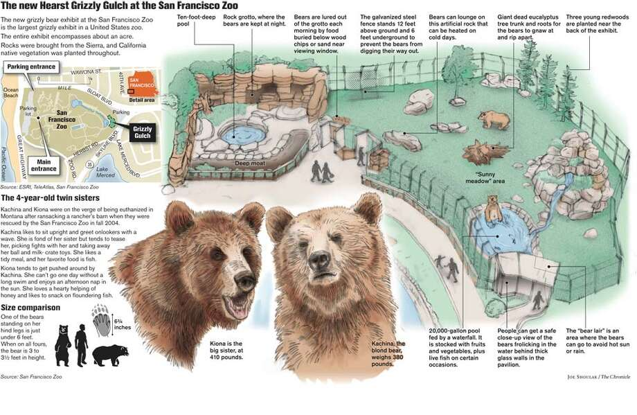 The new Hearst Grizzly Gulch at the San Francisco Zoo. Chronicle graphic by Joe Shoulak Photo: Joe Shoulak