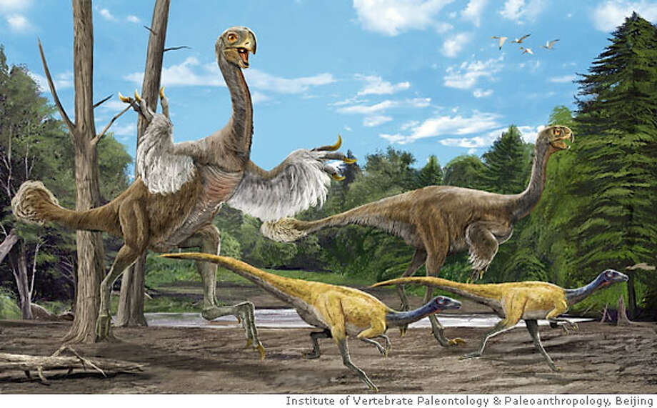 An artist's impression of a Gigantoraptor is released during a news conference announcing its discovery in Beijing June 13, 2007. China has uncovered the skeletal remains of a gigantic, surprisingly bird-like dinosaur, which has been classed as a new species and genus. Eight metres long and standing at twice the height of a man at the shoulder, the fossil of the feathered but flightless Gigantoraptor erlianensis was found in the Erlian basin in Inner Mongolia, researchers wrote in the latest issue of Nature. The researchers said the dinosaur was discovered in April 2005. REUTERS/Handout (CHINA). EDITORIAL USE ONLY. NOT FOR SALE FOR MARKETING OR ADVERTISING CAMPAIGNS. NO ARCHIVES. NO SALES. Photo: HO