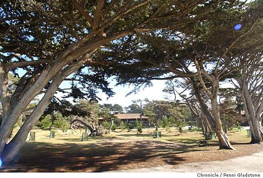 ASILOMAR145_pg.jpg  Looking back at the resort thru the trees.  Asilomar, not just a conference center. Has the largest collection of Julia Morgan buildings.  12/14/03 in Asilomar. PENNI GLADSTONE / The Chronicle Photo: PENNI GLADSTONE