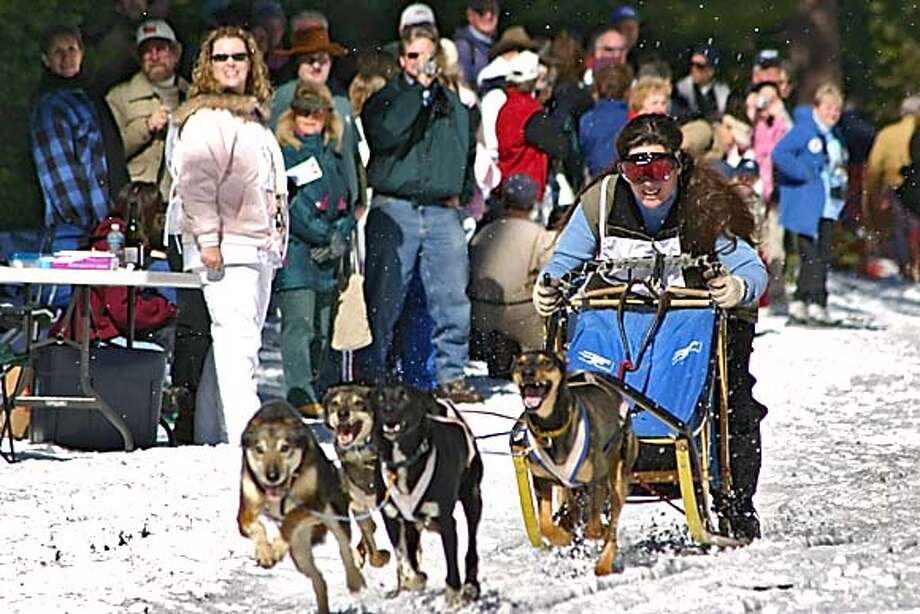 A large crowd cheers as Stacy Motschenbacher of Rogue River, Oregon takes off to a fast start in the 4 dog team Sprint Races last February at the USDA Forest Service Klamath National Forest, Deer Mountain/Chuck Best Snowmobile Park, just north of Weed on Hwy. 3. Photo: Handout