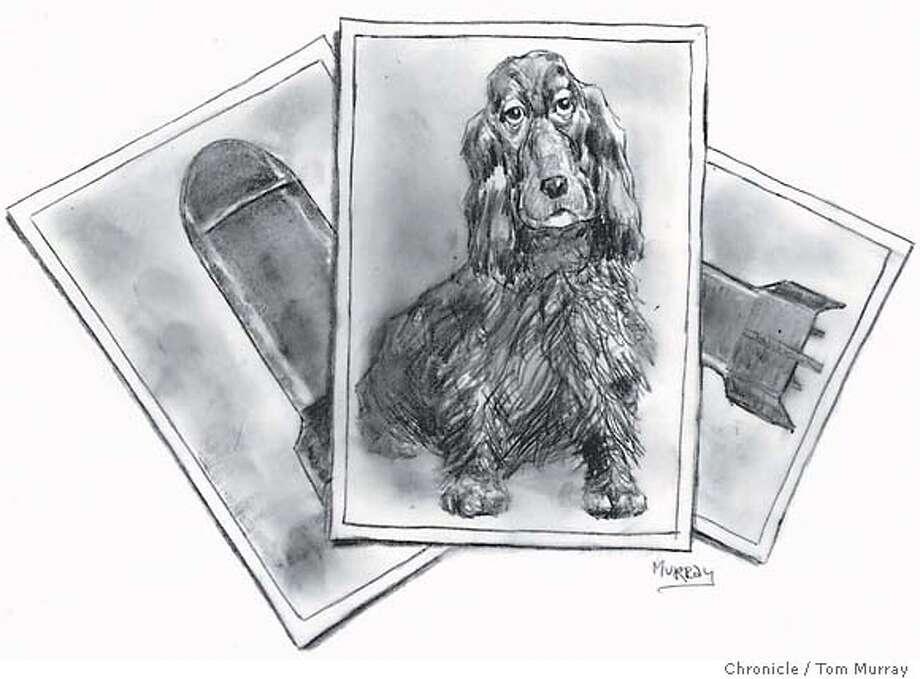 Skippy. Chronicle illustration by Tom Murray