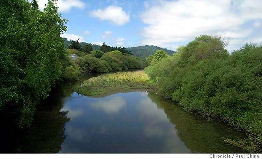 nbtomales213_pc.jpg The Tomales Bay Watershed Council recently awarded a $500,000 grant to study and restore Lagunitas Creek (shown), which is spawning ground for coho salmon and steelhead trout. Tomales Bay on 9/4/03. PAUL CHINN / The Chronicle Photo: PAUL CHINN