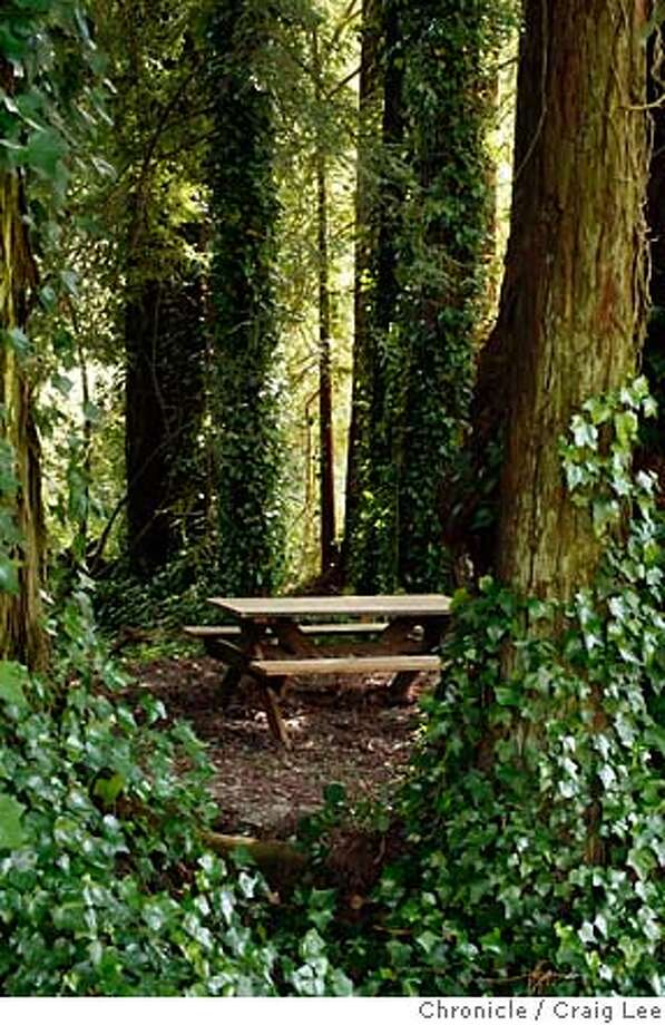 winepicnics25_145_cl.JPG  Story on wineries that have picnic areas. This is the picnic area at Bonny Doon winery in Santa Cruz.  Event on 5/14/07 in Santa Cruz. photo by Craig Lee / The Chronicle MANDATORY CREDIT FOR PHOTOG AND SF CHRONICLE/NO SALES-MAGS OUT Photo: Photo By Craig Lee