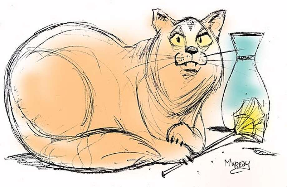'Fang' shui: The art of rearranging home furnishings for your cat. Chronicle illustration by Tom Murray