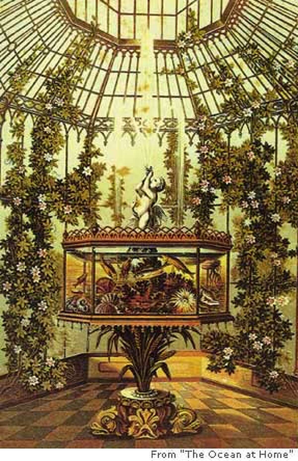 An aquarium, the television set of the 19th century, was the parlor trophy; it was richly decorated and given pride of place. Photo from