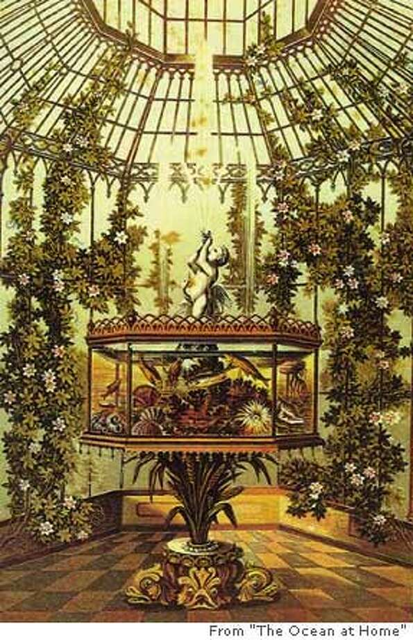 "An aquarium, the television set of the 19th century, was the parlor trophy; it was richly decorated and given pride of place. Photo from ""The Ocean at Home"""