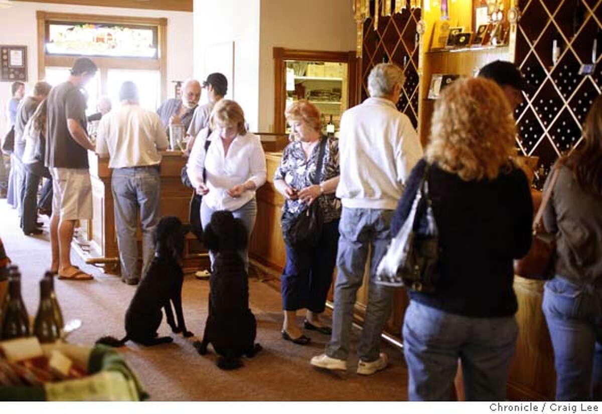 PASOROBLES27_676_cl.JPG Story about the wine scene in Paso Robles. This is Eberle Winery. Photo of the taste room where the resident wine poodles named Cabernet and Roussanne, try to join in on the tasting. Event on 4/13/07 in Paso Robles. photo by Craig Lee / The Chronicle MANDATORY CREDIT FOR PHOTOG AND SF CHRONICLE/NO SALES-MAGS OUT