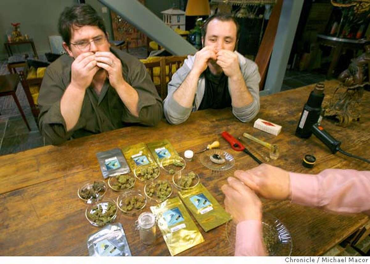 boutique_pot_187_mac.jpg Rick Pfromer, (left) Elan and Steve DeAngelo,(hands) sample some of the varieties of marijuana. Some of the names, Mango Kush, Skunk Kush, Sour Diesel, Santori and Purps. The boutiquing of pot. Northern California is the center of a new kind of weed connoisseurship, with growers and smokers likening it to wine snobbery. Harborside Health Clinic of Oakland serves patients with many varieties of marijuana. Photographed in, Oakland, Ca, on 2/15/07. Photo by: Michael Macor/ San Francisco Chronicle Ran on: 04-22-2007