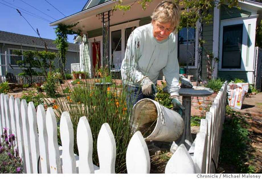 Ros Munro hand waters her mostly drought resistant landscaping in front of her Santa Cruz home. She was applying mulch to her plants today, March 30, 2007 so that they would retain moisture.  Beginning May 1, the Santa Cruz Water Department will place mandatory limits on water use for the 90,000 people it serves. The restrictions, a response to this year's low rainfall, prohibit watering lawns and gardens from 10 a.m. to 5 p.m. every day. Photo by Michael Maloney / San Francisco Chronicle ***Ros Munro  Ran on: 04-01-2007  Ros Munro dumps water in her drought-tolerant garden in front of her Santa Cruz home. She plans to add mulch to preserve moisture.  Ran on: 04-01-2007  Ros Munro dumps water in her drought-tolerant garden in front of her Santa Cruz home. She plans to add mulch to preserve moisture. Photo: Michael Maloney