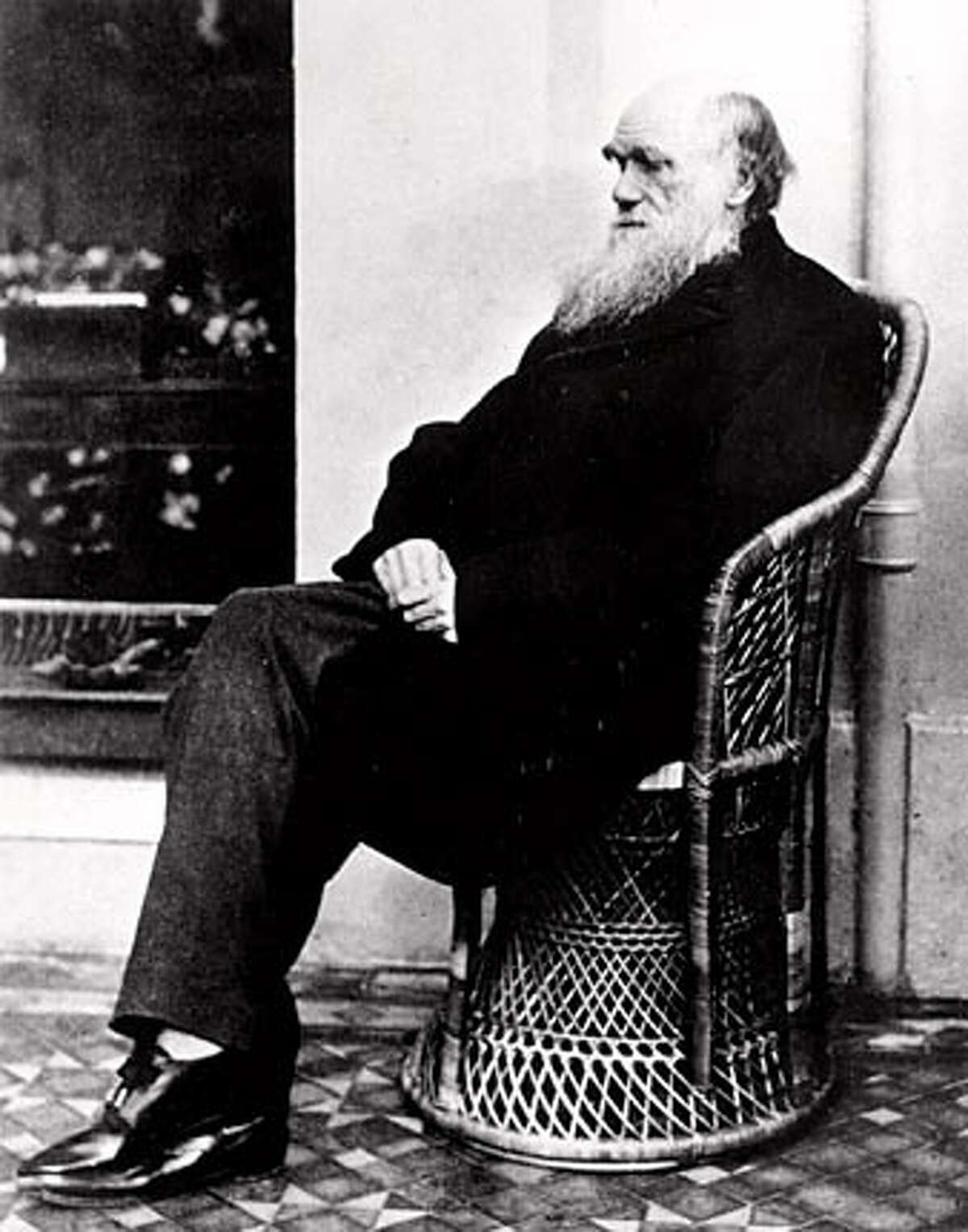 THIS IS A HANDOUT IMAGE. PLEASE VERIFY RIGHTS. STACK07-B-05FEB02-DD-HO Charles Darwin poses in a wicker chair in 1875 at an unknown location. (AP Photo) CAT