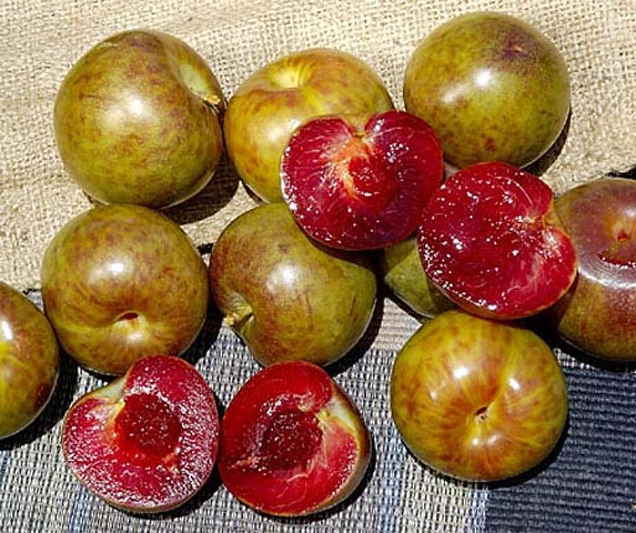 Flavor Supreme Pluot Photo: Handout