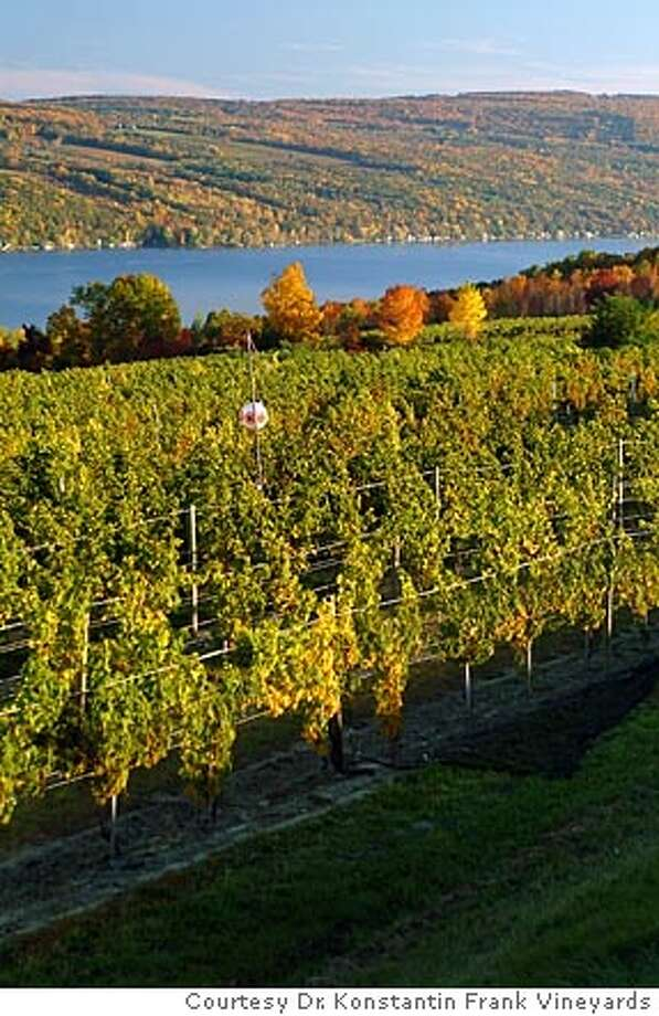 The vineyards of Dr. Konstantin Frank Vineyards overlook Keuka Lake in the Finger Lakes region of New York state.  Courtesy Dr. Konstantin Frank Vineyards Photo: Courtesy
