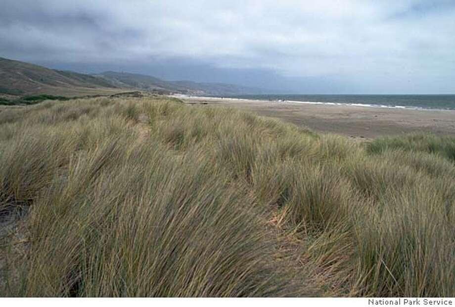 Pt. Reyes National Seashore (undated)  National Park Service / National Park Service Photo: Courtesy National Park Service
