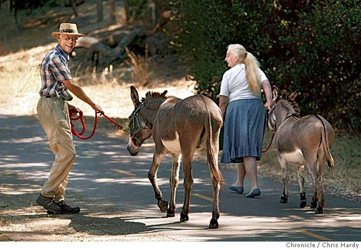 Welcome to the neighborhood party at Bol park in Barron Park, a Palo Alto neighborhood that has maintained strong community spirit through the years. It also is the home of two donkeys. Volunteers take care of them and take them to community events for the kids to pet. in Palo Alto 8/28/05 Chris Hardy / San Francisco Chronicle