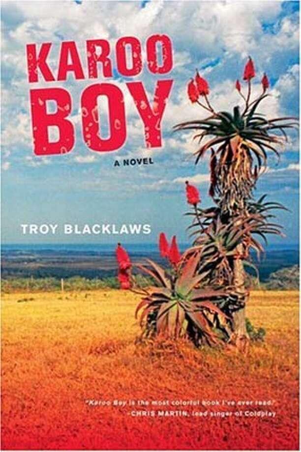 """Book cover art for, """"Karoo Boy."""" Photo: Brenn Jones"""