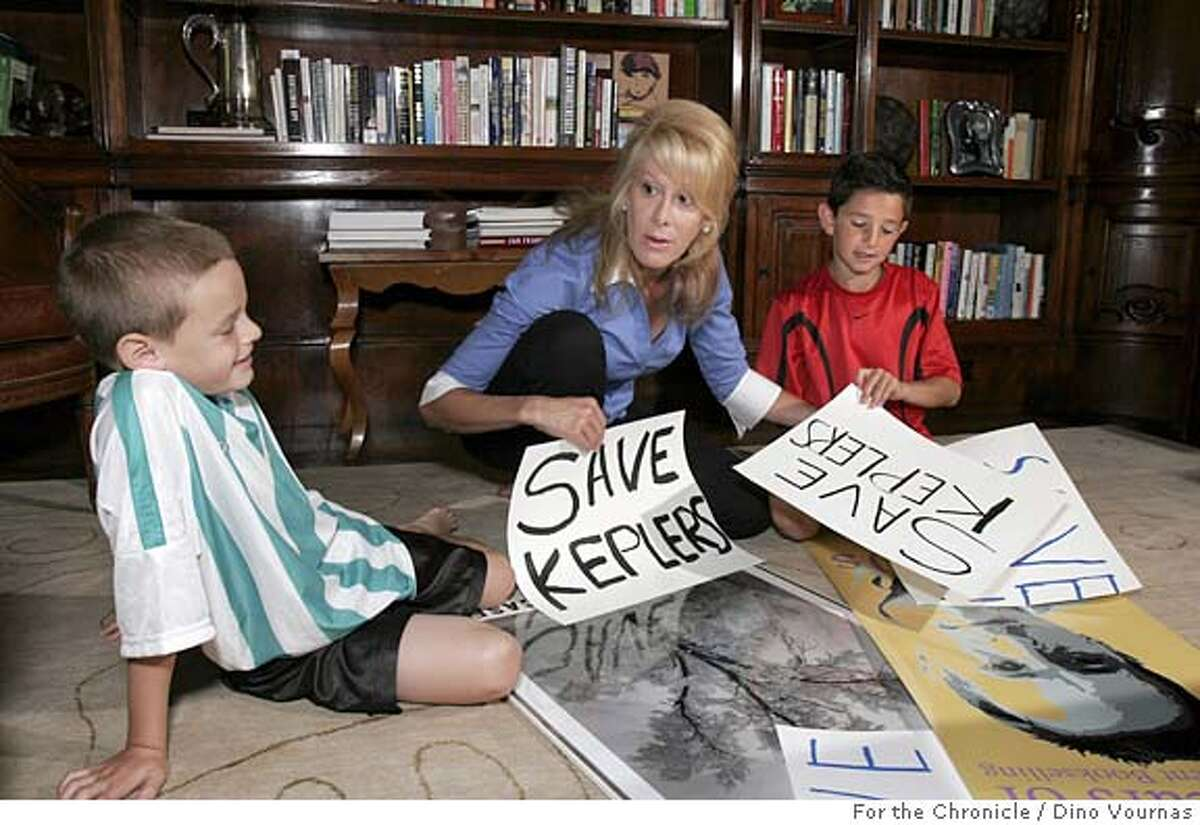 Literary agent Jillian Manus-Salzman of Atherton peruses posters in her library, some created by her children, Brock,7, left, and Nicklaus, 10, to help in her drive to save venerable Keppler's Book Store. by Dino Vournas/for the Chronicle