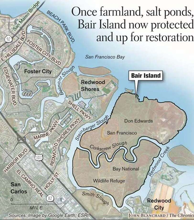 Bair Island. Chronicle graphic by John Blanchard