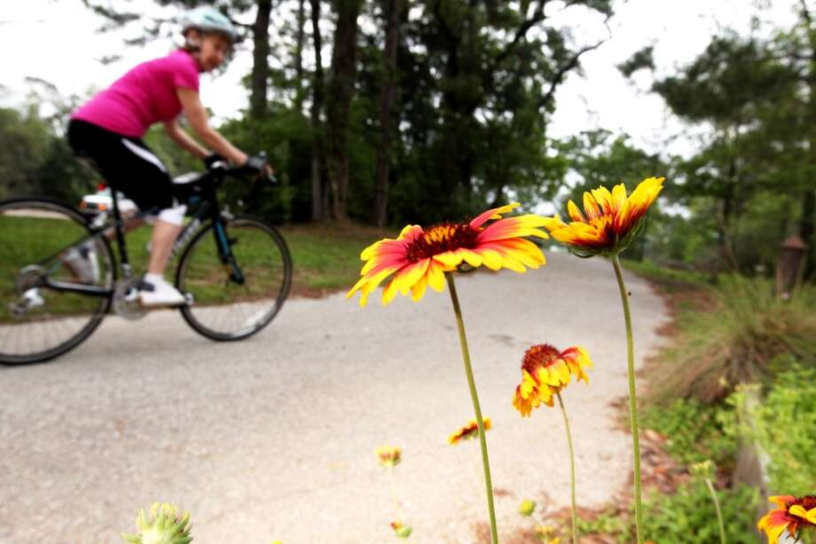 A cyclist rides past a group of wild flowers along the 4500 block of Woodway Drive in Houston on Monday. (Johnny Hanson/Chronicle)