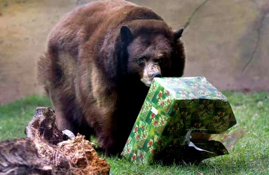 If you don't want to regift you can always give the present to your friendly neighborhood bear.  Photo: ANA VENEGAS, Wire / THE ORANGE COUNTY REGISTER