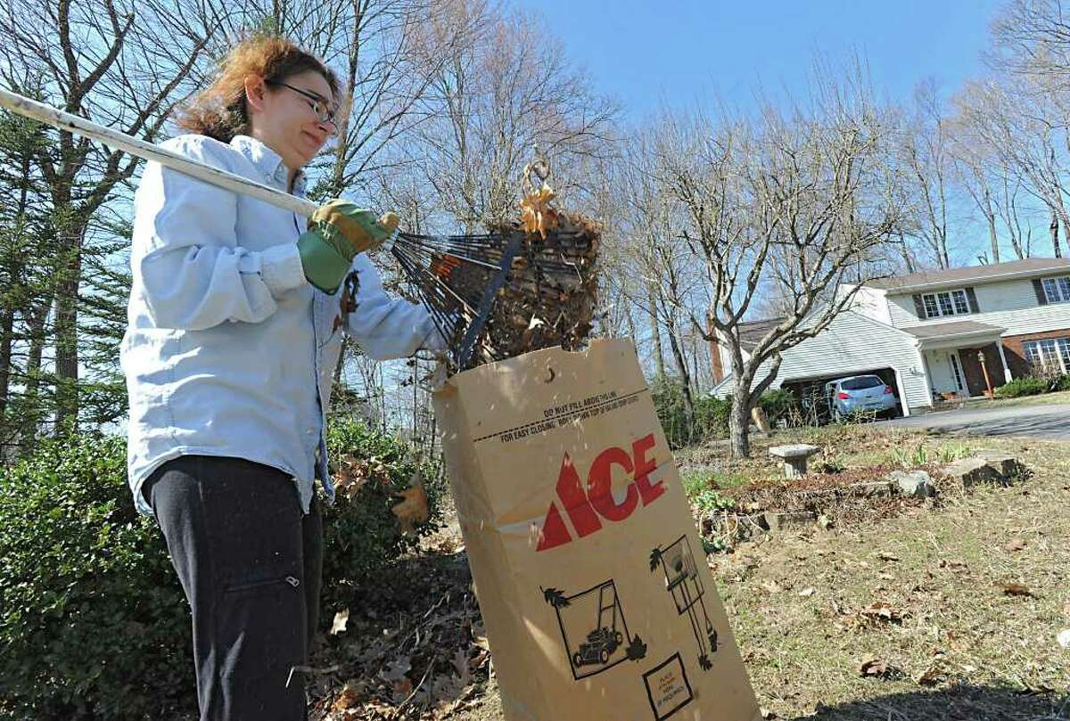 Tisch Adel rakes her front lawn at her home Tuesday March 20, 2012 in Clifton Park, N.Y. (Lori Van Buren / Times Union)