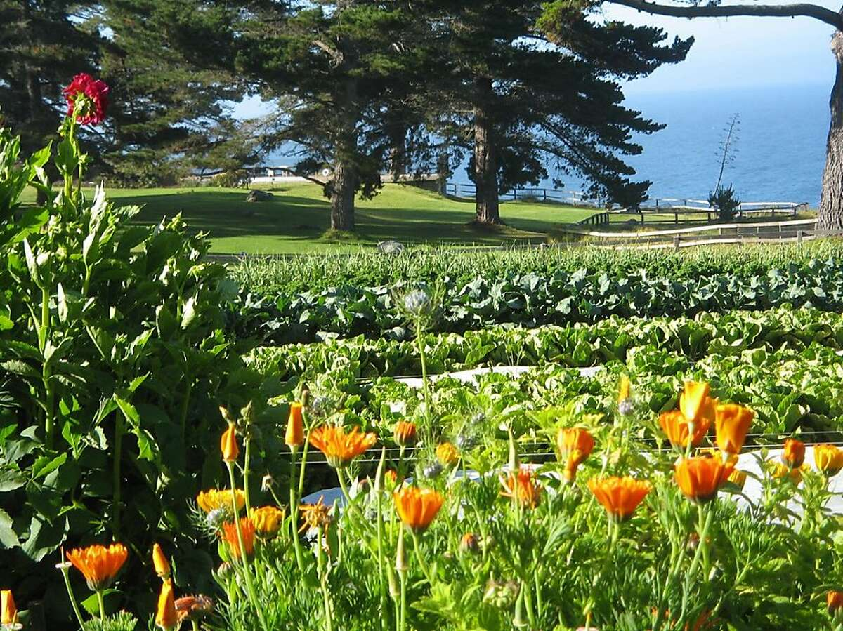 The farm at Esalen Farm and Garden provides the ingredients for the meal included at