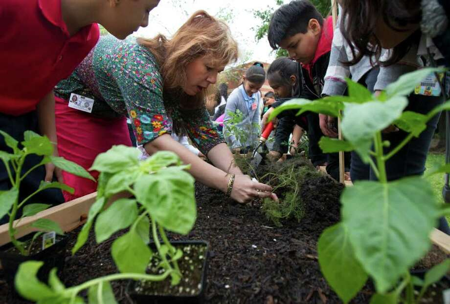 Art teacher Julia Thomas, center, shows students how to properly place a plant in the soil during Teaching Garden Plant Day Celebrations at Crespo Elementary School. Photo: Cody Duty, Houston Chronicle / © 2011 Houston Chronicle