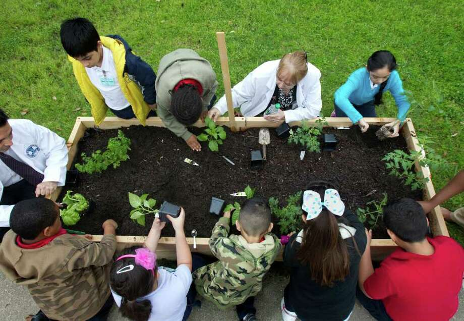 Students, along with principal Auden Sarabia, left, and Science Lab Katharine Vanya, above center, plant plants during Teaching Garden Plant Day Celebrations at Crespo Elementary School. Photo: Cody Duty, Houston Chronicle / © 2011 Houston Chronicle