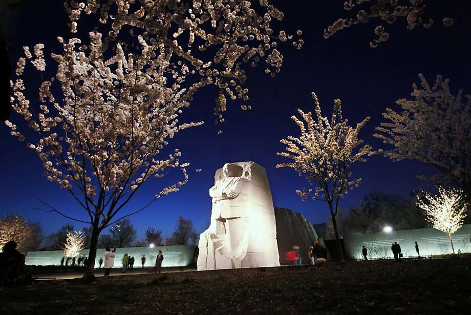 In this photo taken, Tuesday, March 20, 2012, blooming Cherry blossom trees are seen just after sunset at the Martin Luther King, Jr. Memorial along the tidal basin in Washington. This year marks the centennial of the trees, which were a gift from Japan to the United States in 1912. Due to unseasonably warm weather the trees are blooming earlier than usual. (AP Photo/Jacquelyn Martin) Photo: Jacquelyn Martin, Associated Press
