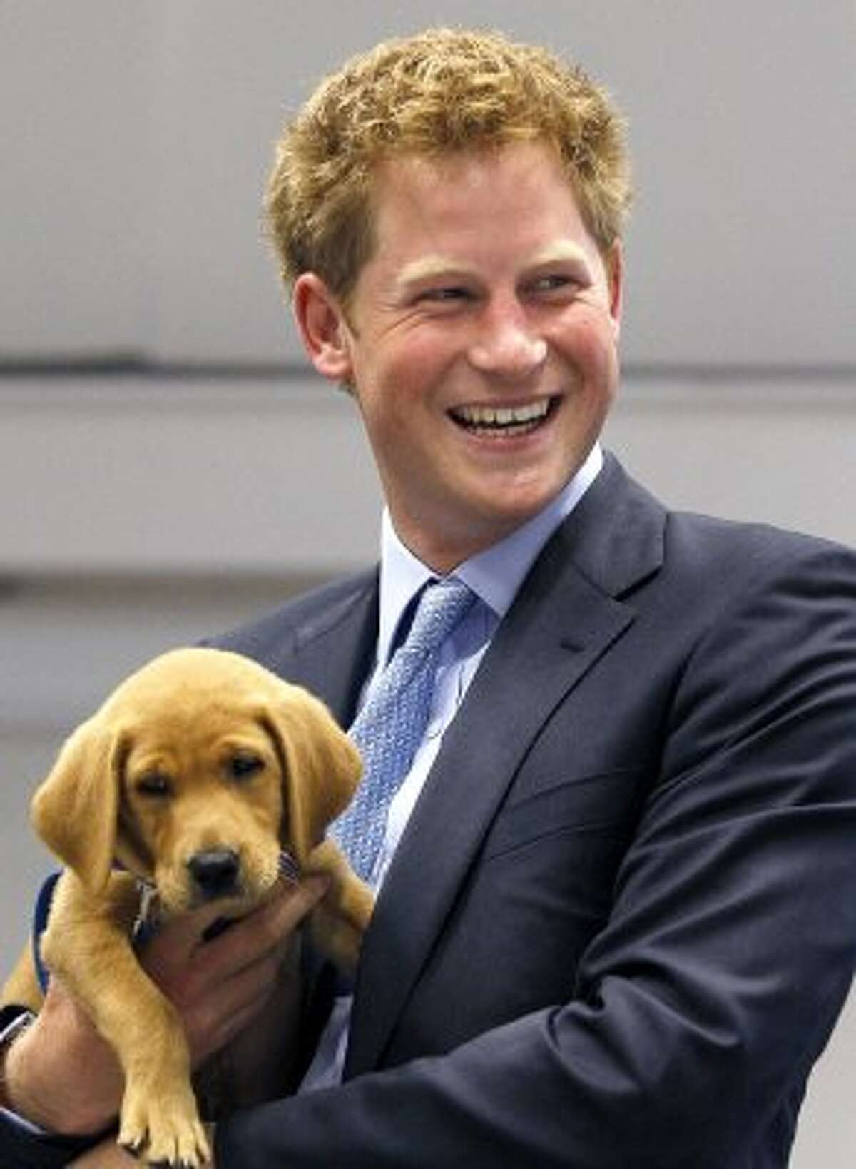 Prince Harry holds an eight week old puppy called Veyron during a visit to the charity Canine Partners Training Centre. (WPA Pool / Getty Images)
