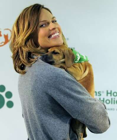 "Two-time Academy Award winning actress Hilary Swank poses with a puppy at the Bideawee Animal Center to raise awareness for the Iams ""Home 4 the Holidays"" pet adoption drive.  (TIMOTHY A. CLARY / AFP/Getty Images)"