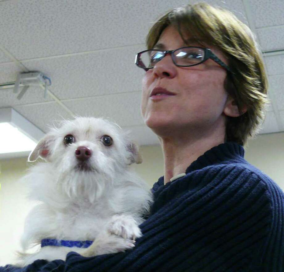 """Former Selectman Sherri Steeneck shows off """"Scruffy,"""" a male mixed-breed puppy available for adoption at the town's animal shelter on One Rod Highway. Photo: Genevieve Reilly / Fairfield Citizen"""
