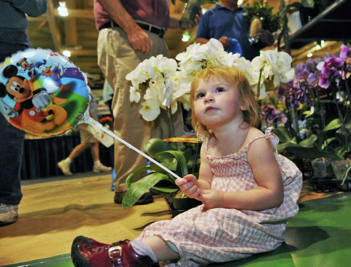 21-month-old Gabriella Bock of Schodack Landing finds a new balloon just as interesting as the flowers at the 25th Capital District Garden and Flower Show at Hudson Valley Community College in Troy on Friday, March 23, 2012. (John Carl D'Annibale / Times Union)