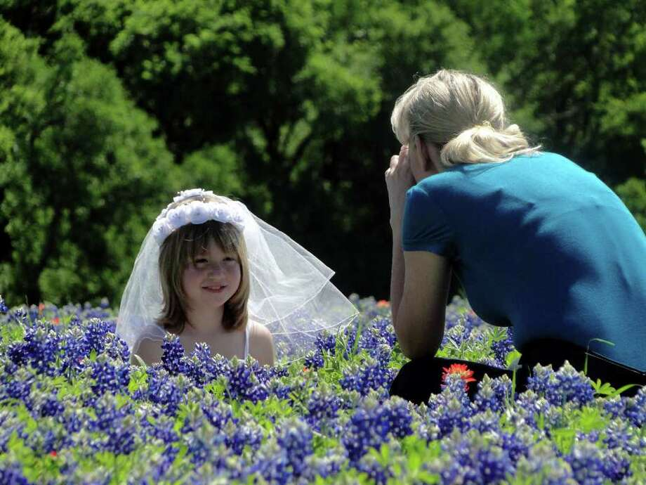 Katelyn Edgar, 8, wearing her first communion dress, poses in bluebonnets for her mom, Stephanie Edgar. The family from Palmer joined many in the 13-acre bluegonnet patch outside Ennis, Texas, on March 25, 2012. Photo: Tracy Hobson Lehmann