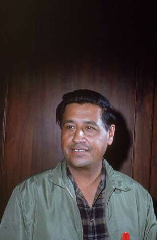 American labor leader Cesar Chavez (1927 - 1993) smiles while standing in front of a wooden wall, 1950s. Photo: Hulton Archive, Getty Images / 2003 Getty Images