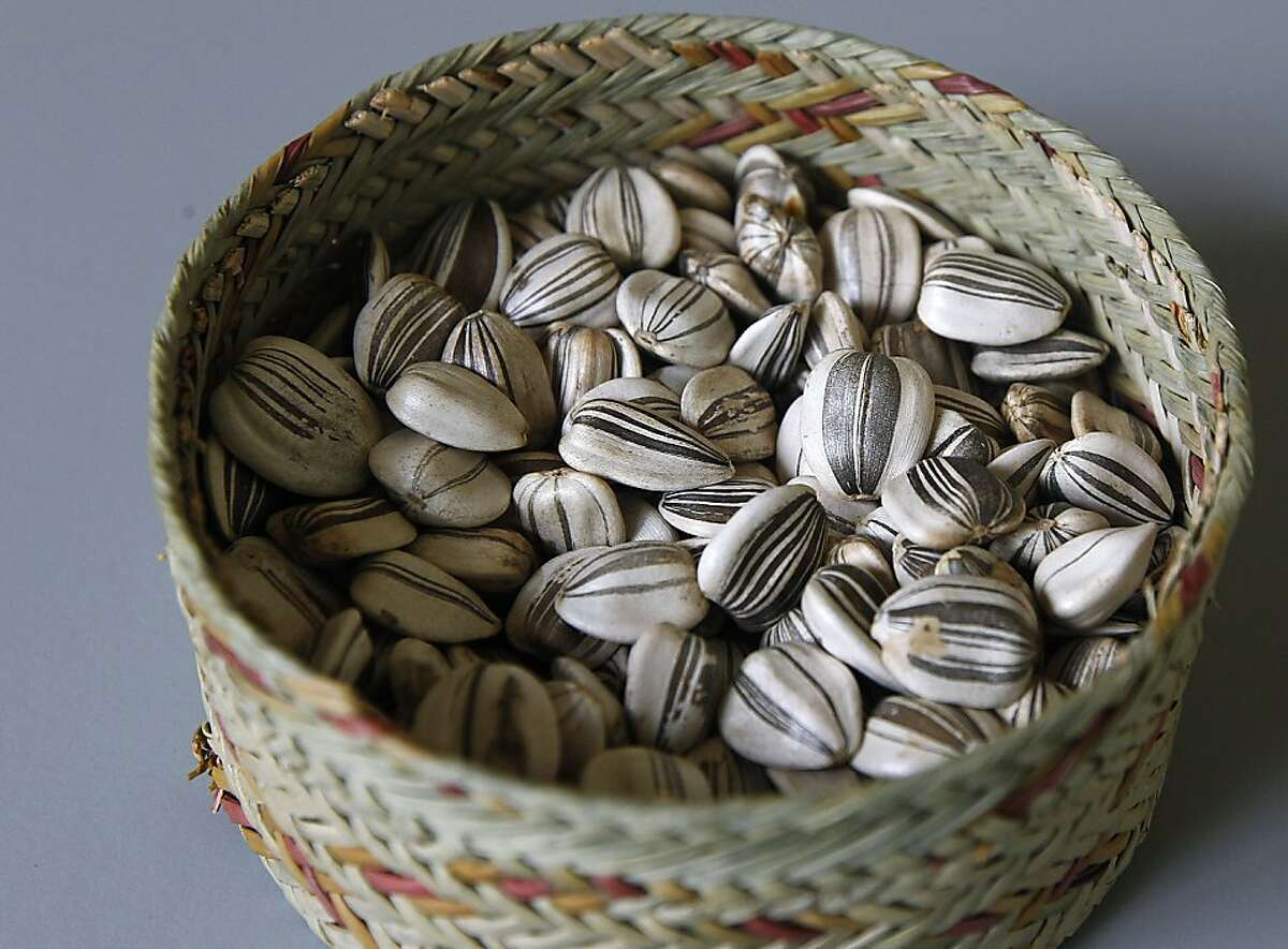 Mammoth gray-striped sunflower seeds, cultivated by The Living Seed Company, are seen in Nicasio, Calif. on Monday, Feb. 20, 2012.