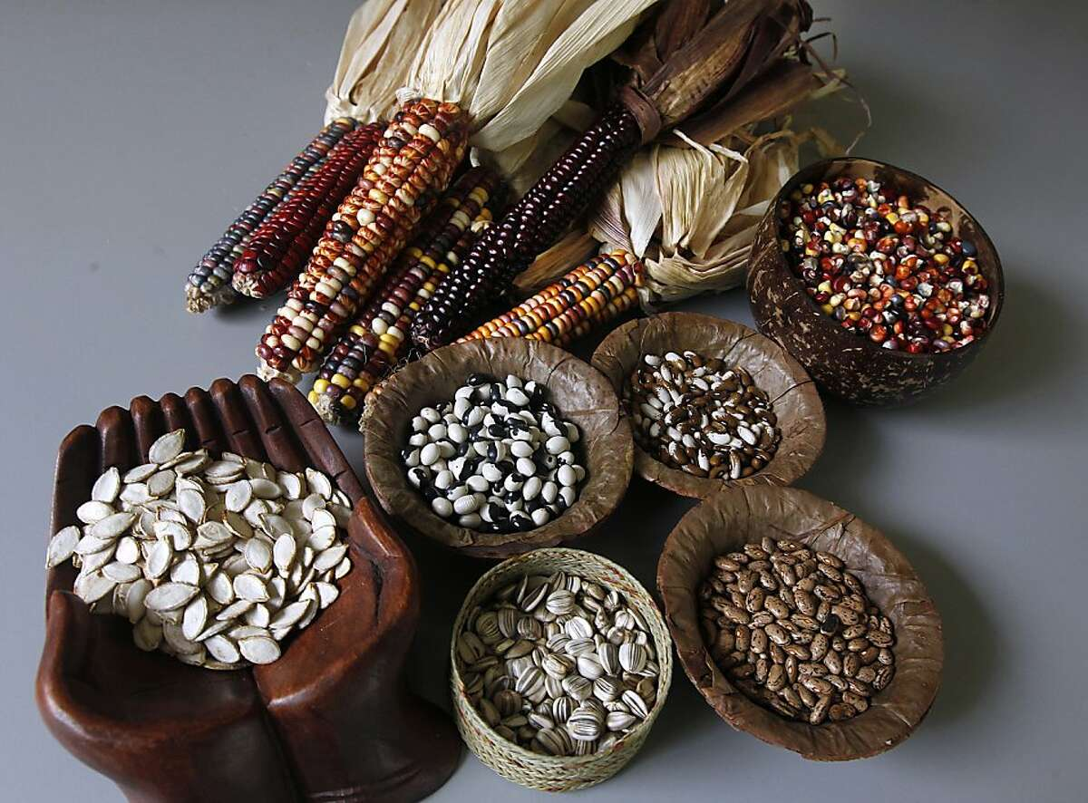 A variety of seeds cultivated by The Living Seed Company are displayed in Nicasio, Calif. on Monday, Feb. 20, 2012.