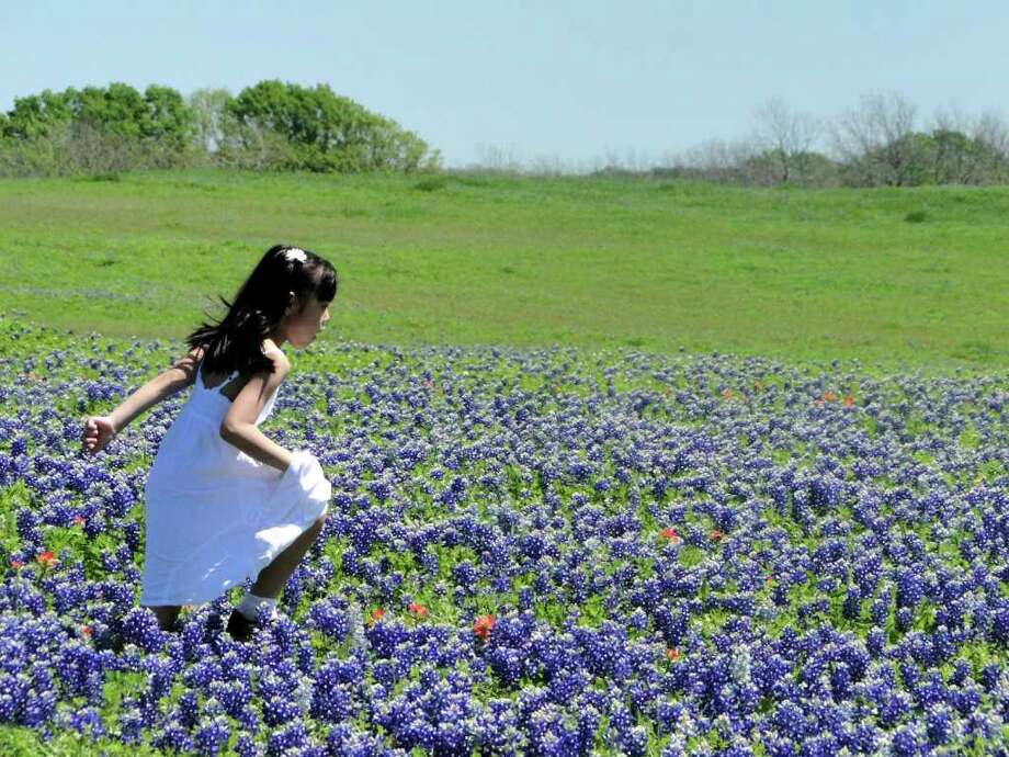 Grandma took you to see the bluebonnets. Photo: Tracy Hobson Lehmann