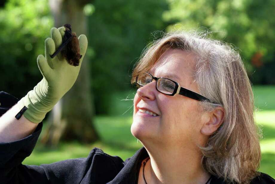 Geri Griswold, affectionately known at The Bat Lady, will bring a few of her friends along to the Mashantucket Pequot Museum & Research Center for programs on the little creature Wednesday and Thursday, April 11-12. Photo: Contributed Photo