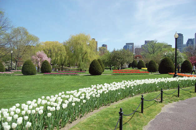 Boston Public Garden (Photo courtesy of Boston Parks and Recreation Department)