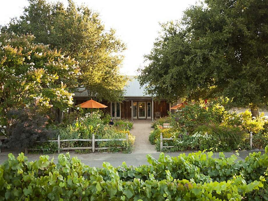 The garden doubles as Saintsbury's fair-weather tasting room, overlooking the Carneros vineyards. Photo: Courtesy Of Saintsbury Vineyards