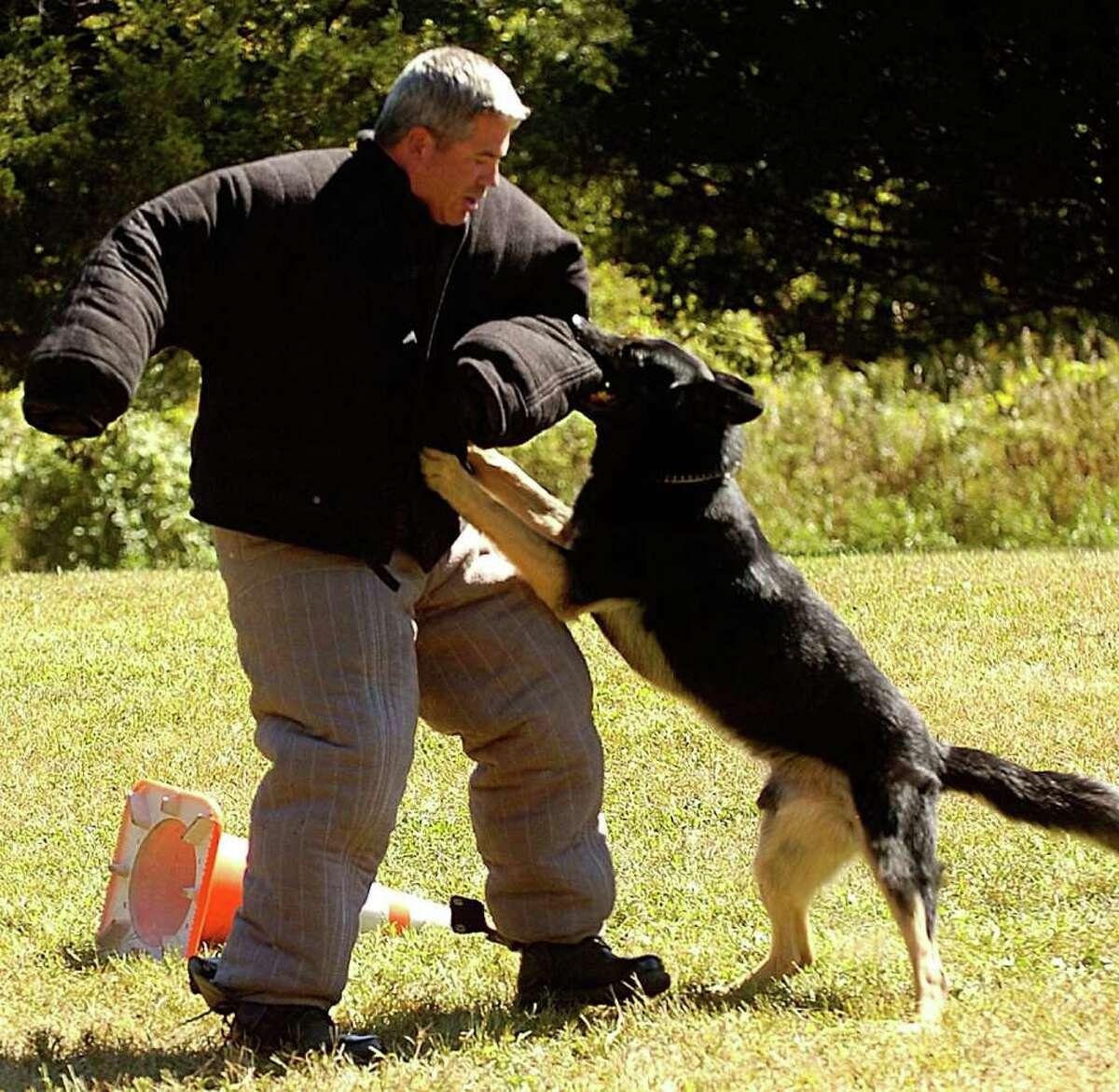 2. Norwalk Police Sgt. Gregg Scully: $201,540